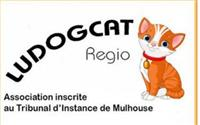 Association Ludogcat