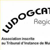 Association - Ludogcat