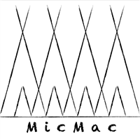 Association MicMac