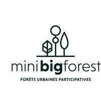 Association - MiniBigForest