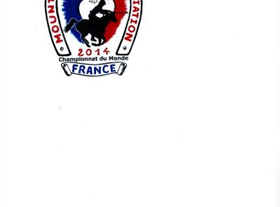 Formulaire principal - Mounted  Games Association France