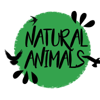 Association - Natural Animals