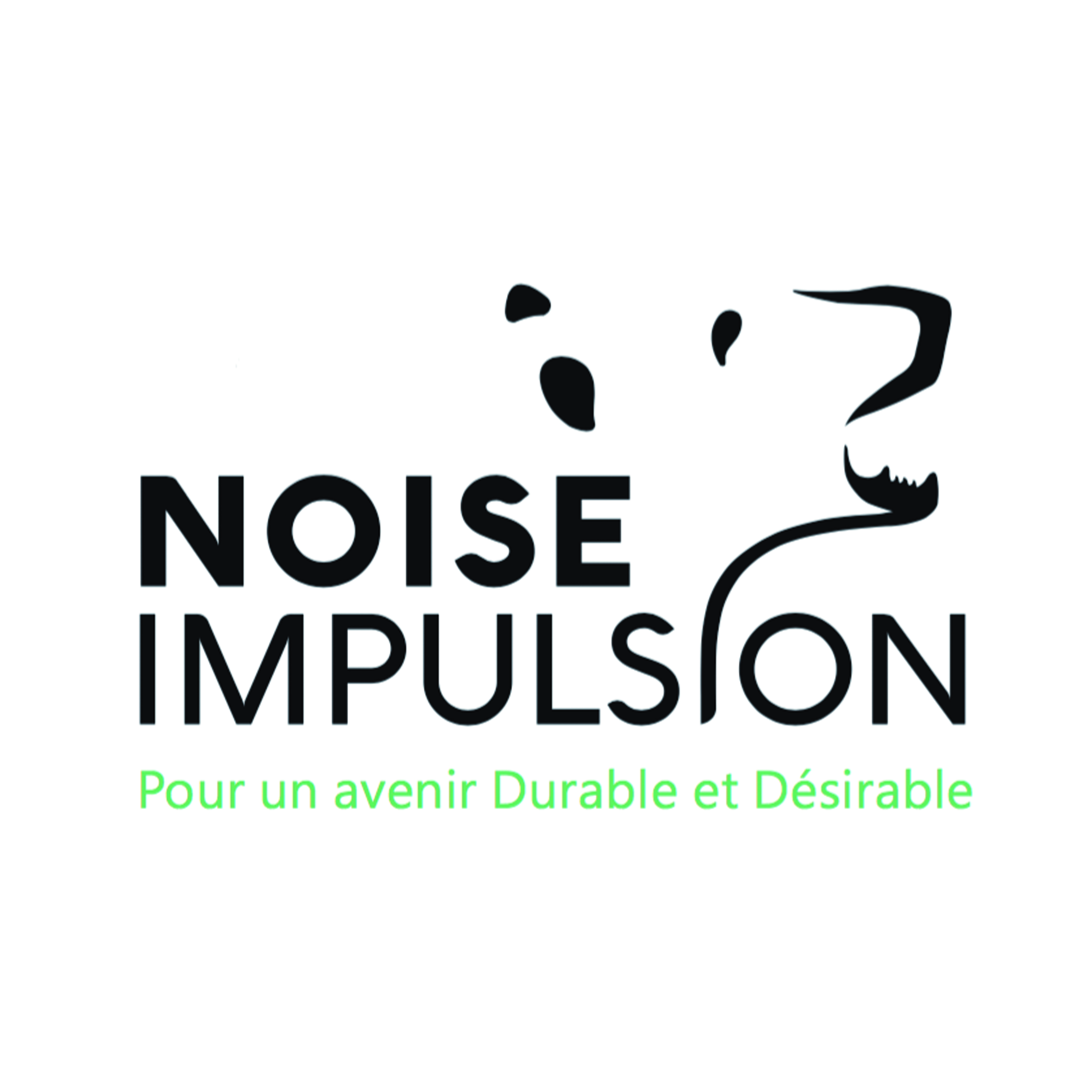Association - Noise Impulsion Association