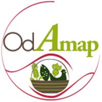 Association - OdAmap