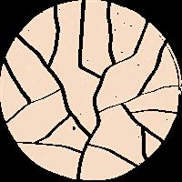 Association - Olterra