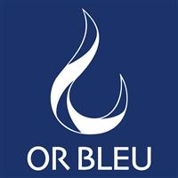 Association - Or Bleu