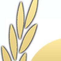 Association - Organisation Mondiale de la Gastronomie