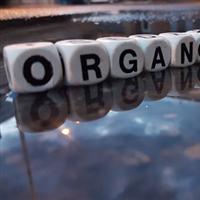 Association - organon art compagnie