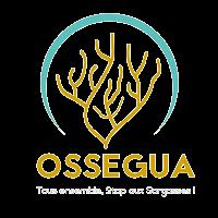 Association - OSSEGUA