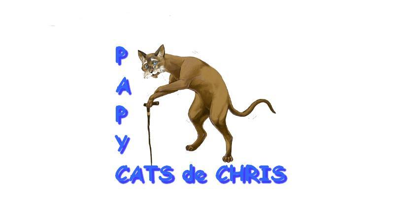 Association - PAPYCATS DE CHRIS
