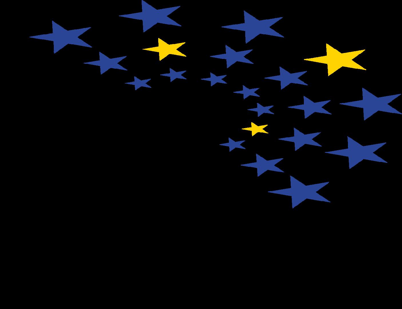 Association - Parlement Européen des Jeunes - France