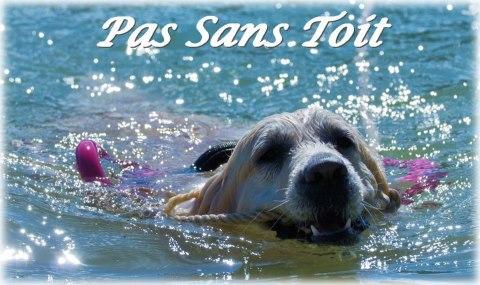 Association - PAS SANS TOIT