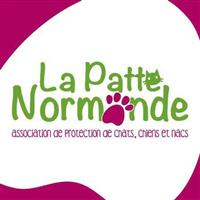 Association Patte Normande
