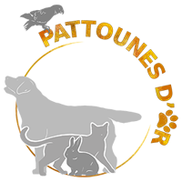 Association Pattounes D'Or