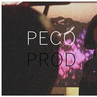 Association - Pecoprod