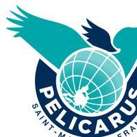 Association - PELICARUS