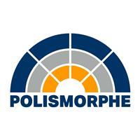 Association - Polismorphe