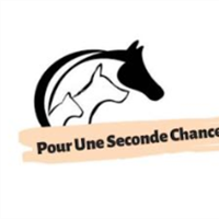 Association - Pour une Seconde Chance