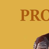 Association - PROFFAC
