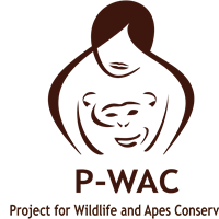 Association - Project for Wildlife and Apes Conservation