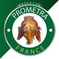 Association - Prometra France
