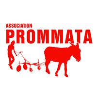 Association - PROMMATA
