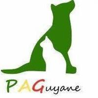 Association - Protection Animale de Guyane