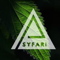 Association - Psyfari