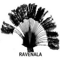Association - RAVENALA