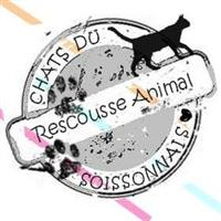 Association - Rescousse Animal