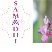 Association - SAMADHI
