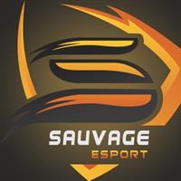 Association - Sauvage Esports