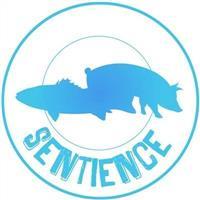Association - Sentience Lille