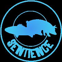 Association - Sentience Lyon