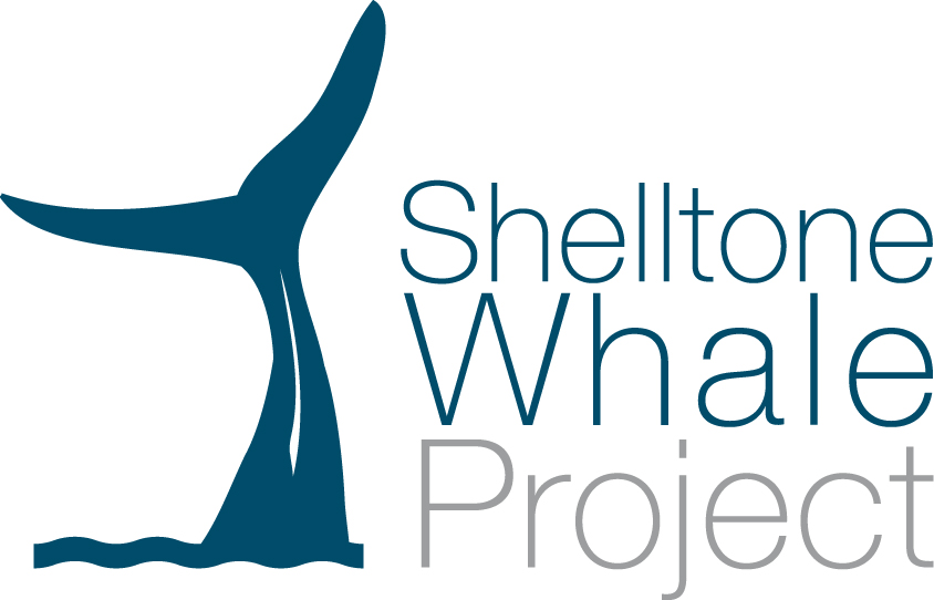 Association - Shelltone Whale Project