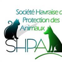 Association - SHPA