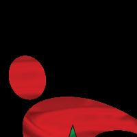 Association - Solidarité Euro Maroc Amitié