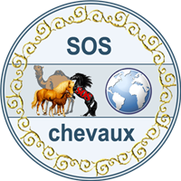 Association SOSChevaux