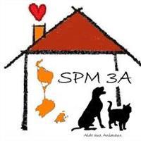 Association - SPM3A