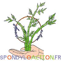 Association - Spondyl(O)action