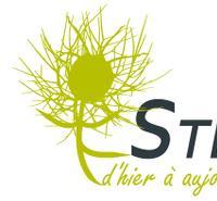 Association - Stéphanoises