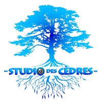 Association - Studio des Cèdres