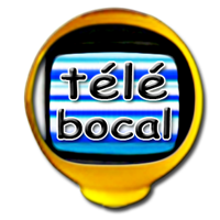 Association Bocal