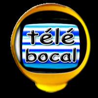 Association - Bocal