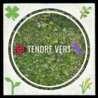 Association - TENDRE VERT