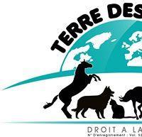 Association - TERRE DES BETES CORSE
