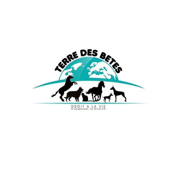 Association - terre des bêtes
