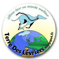 Association - Terre des Lévriers