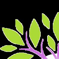 Association - Terre Essence de Soi