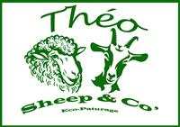 Association Théo Sheep and Co'